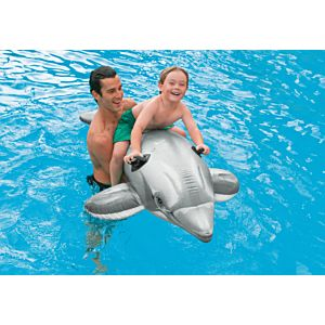 58539 - DOLPHIN RIDE ON